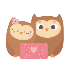 Happy valentines day cute couple owl with message vector
