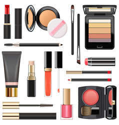 professional makeup cosmetics vector image