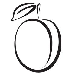 Sketch of plum vector