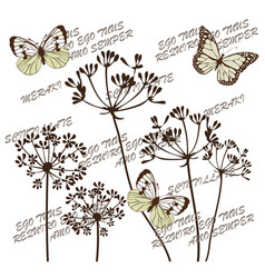 botanical flowers vector image vector image