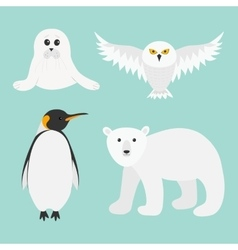 Arctic polar animal set White bear owl king vector image