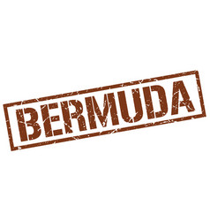 Bermuda brown square stamp vector