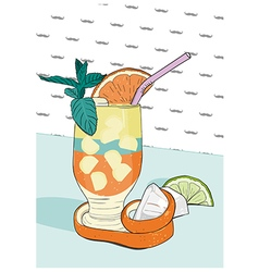 Cocktail with orange peel Hand drawn vector
