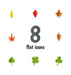 Flat icon leaf set of alder linden hickory and vector