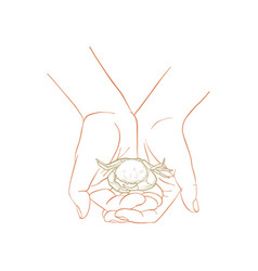 Hand drawn woman hands vector