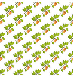 Seamless pattern with apricot branches vector