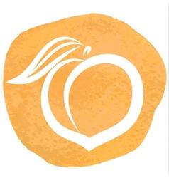 sketch of peach vector image