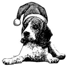 Christmas Beagle dog vector image