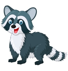 Cartoon cute raccoon on white background vector image