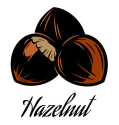 color of a hazelnut pod vector image