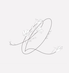 Hand lettering floral q monogram and logo vector