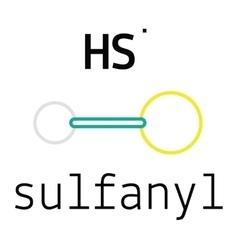 HS sulfanyl molecule vector image