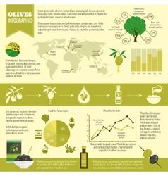 Olives infographics set vector