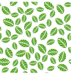 Seamless pattern with greenery leaves vector