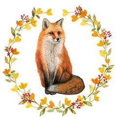 watercolor realistic red fox in a fall wreath vector image