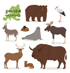Animal animalistic character in forest bear vector