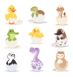 cute new born animals in eggs easter farm holiday vector image