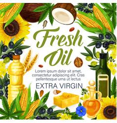 Herbs extra virgin oils of organic plants poster vector