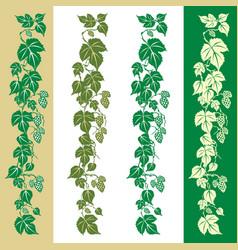 Hops plant vector