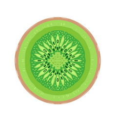 sliced colored sketch style kiwi fruit vector image