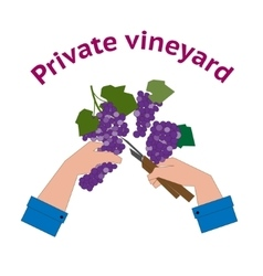 Vineyard logo in flat style vector