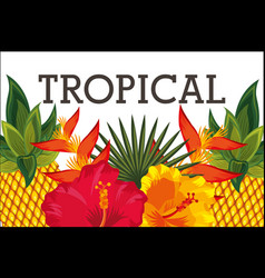 tropical flower leaves animal card vector image
