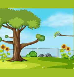 a green garden scene vector image