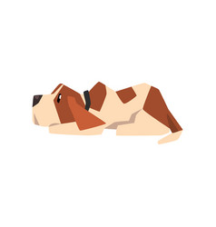 beagle dog lying on the floor cute funny animal vector image