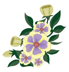 Beautiful gentle yellow purple flowers vector