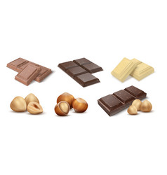Chocolate with nuts cocoa dessert bars with vector