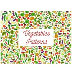 Farm vegetables seamless pattern backgrounds vector image