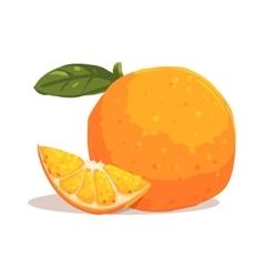 Fresh Full Garden Orange WIth Leaf And Orange vector