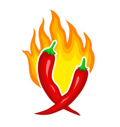 hot red burning peppers fire spicy ingredient vector image