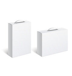 realistic white package box vector image