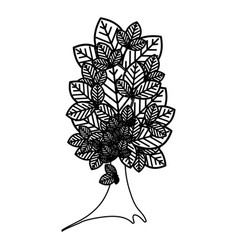 sketch silhouette tree plant with several leaves vector image