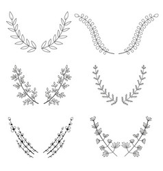 hand drawn wreath laurel vector image