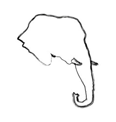 head elephant wild animal safari african vector image