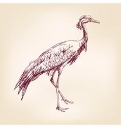 japanese crane hand drawn illustration realistic vector image