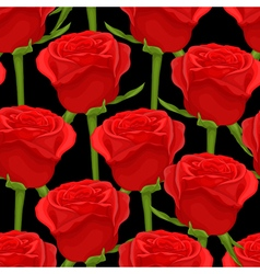 Seamless background with red roses on black vector