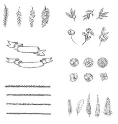 Set of hand drawn elements flower feathers vector