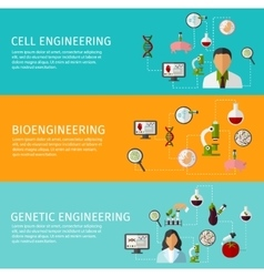 Three Biotechnology Banner Set vector image