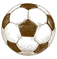 etching football ball vector image