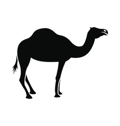 Camel icon simple style vector image vector image