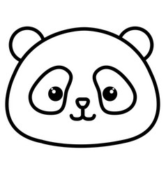 animal panda vector image