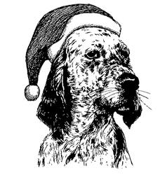 Christmas English setter dog 1 vector image