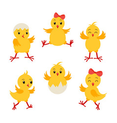 collection cartoon chikens for easter design vector image