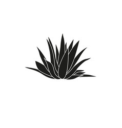 Icon agave simple vector