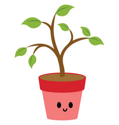 plant in pink pot on white background vector image