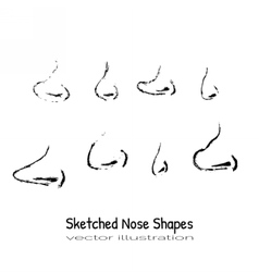 shapes nose vector image