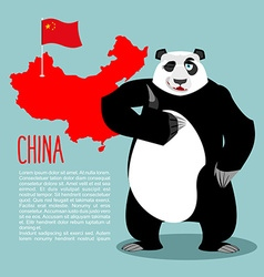 Panda and map and flag of China Chinese medvde vector image vector image